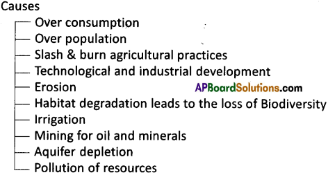 AP Board 9th Class Social Studies Solutions Chapter 5 Biosphere 5