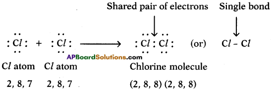 AP SSC 10th Class Chemistry Solutions Chapter 10 Chemical Bonding 10