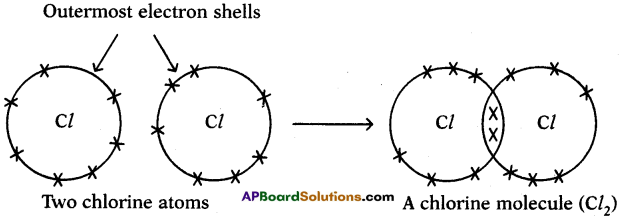 AP SSC 10th Class Chemistry Solutions Chapter 10 Chemical Bonding 11
