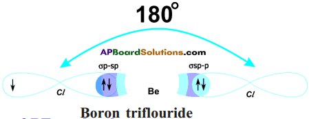 AP SSC 10th Class Chemistry Solutions Chapter 10 Chemical Bonding 21