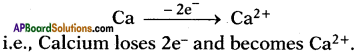 AP SSC 10th Class Chemistry Solutions Chapter 10 Chemical Bonding 3