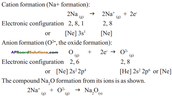 AP SSC 10th Class Chemistry Solutions Chapter 10 Chemical Bonding 31
