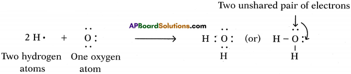AP SSC 10th Class Chemistry Solutions Chapter 10 Chemical Bonding 8