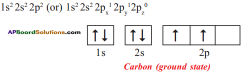 AP SSC 10th Class Chemistry Solutions Chapter 14 Carbon and its Compounds 34