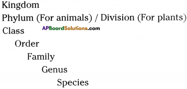 AP Board 9th Class Biology Important Questions Chapter 5 Diversity in Living Organism 3
