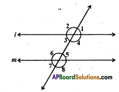 AP Board 9th Class Maths Solutions Chapter 4 Lines and Angles Ex 4.3 1