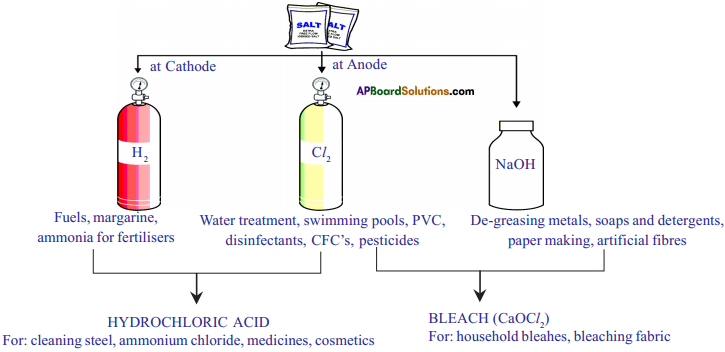 AP SSC 10th Class Chemistry Important Questions Chapter 4 Acids, Bases and Salts 13