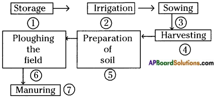 AP Board 8th Class Biology Important Chapter 8 Production and Management of Food From Plants 1