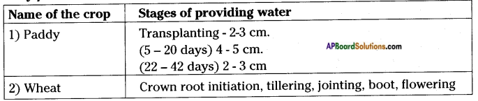AP Board 8th Class Biology Solutions Chapter 8 Production and Management of Food From Plants 13