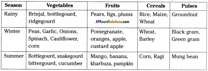 AP Board 8th Class Biology Solutions Chapter 8 Production and Management of Food From Plants 4