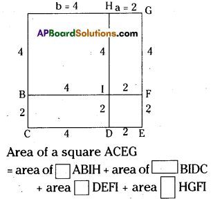AP Board 8th Class Maths Solutions Chapter 11 Algebraic Expressions Ex 11.5 1
