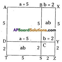 AP Board 8th Class Maths Solutions Chapter 11 Algebraic Expressions Ex 11.5 5