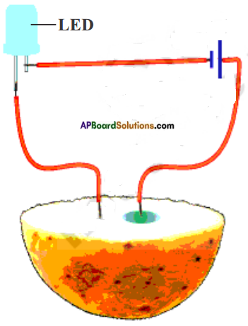 AP Board 8th Class Physical Science Solutions Chapter 9 Electrical Conductivity of Liquids 6