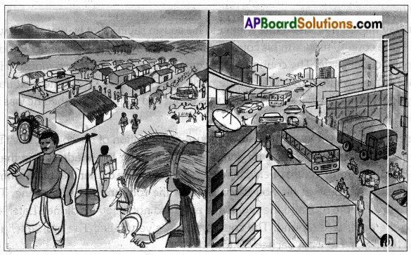 AP Board 7th Class English Solutions Chapter 1A The Town Mouse and the Country Mouse 1