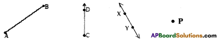 AP Board 7th Class Maths Solutions Chapter 4 Lines and Angles Ex 1 1