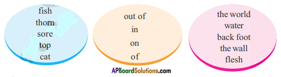 AP Board 8th Class English Solutions Chapter 5A Bonsai Life Part I 2