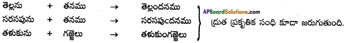 AP SSC 10th Class Telugu Solutions Chapter 9 మాణిక్యవీణ 1
