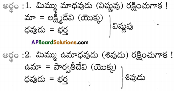 AP SSC 10th Class Telugu Solutions Chapter 9 మాణిక్యవీణ 4