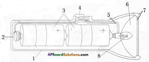 AP Board 6th Class Science Important Questions Chapter 10 Basic Electric Circuits 12