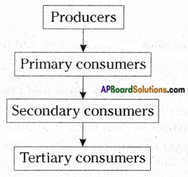 AP Board 6th Class Science Important Questions Chapter 3 Animals and their Food 3