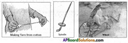 AP Board 6th Class Science Important Questions Chapter 8 How Fabrics are Made 1