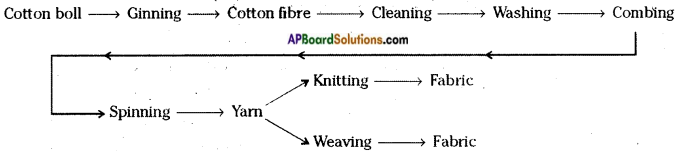 AP Board 6th Class Science Important Questions Chapter 8 How Fabrics are Made 3
