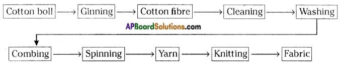 AP Board 6th Class Science Solutions Chapter 8 How Fabrics are Made 1