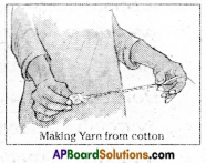 AP Board 6th Class Science Solutions Chapter 8 How Fabrics are Made 5