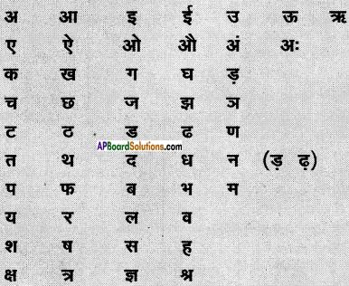 AP Board 6th Class Hindi Solutions सन्नद्धता कार्यक्रम Chapter 10 साँप और चींटियाँ 2
