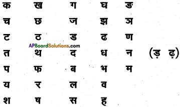 AP Board 6th Class Hindi Solutions सन्नद्धता कार्यक्रम Chapter 1 पाठशाला में पहला दिन 3