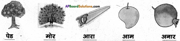 AP Board 6th Class Hindi Solutions Chapter 1 बारिश 22