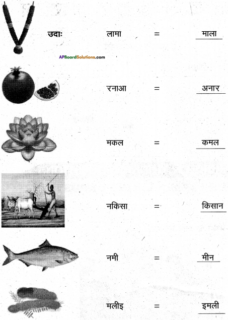 AP Board 6th Class Hindi Solutions Chapter 2 तितली 11