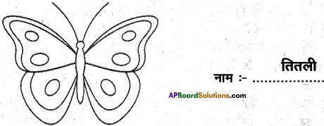 AP Board 6th Class Hindi Solutions Chapter 2 तितली 13