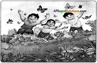 AP Board 6th Class Hindi Solutions Chapter 2 तितली 2