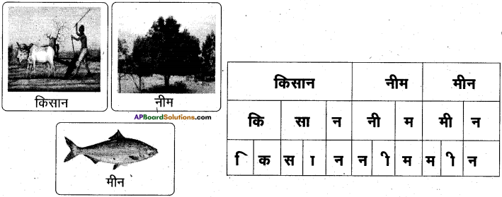 AP Board 6th Class Hindi Solutions Chapter 2 तितली 4