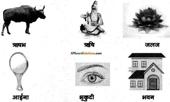 AP Board 6th Class Hindi Solutions Chapter 4 मेरा देश महान है 30