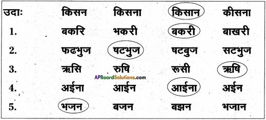 AP Board 6th Class Hindi Solutions Chapter 4 मेरा देश महान है 9