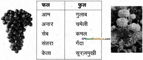 AP Board 6th Class Hindi Solutions Chapter 6 खिलौनेवाला 16