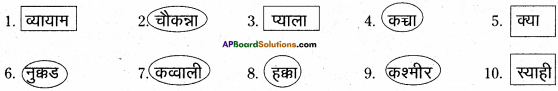 AP Board 6th Class Hindi Solutions Chapter 6 खिलौनेवाला 24