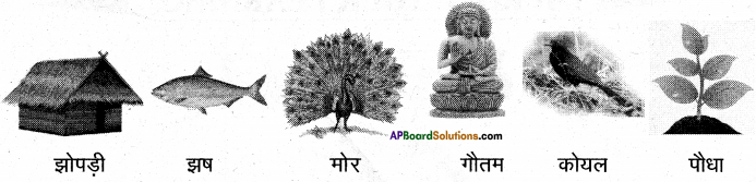 AP Board 6th Class Hindi Solutions Chapter 6 खिलौनेवाला 4