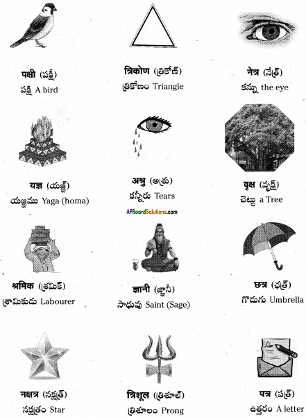 AP Board 6th Class Hindi Solutions Chapter 8 जन्म दिन 1