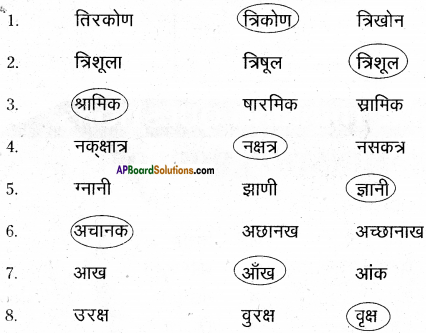 AP Board 6th Class Hindi Solutions Chapter 8 जन्म दिन 14