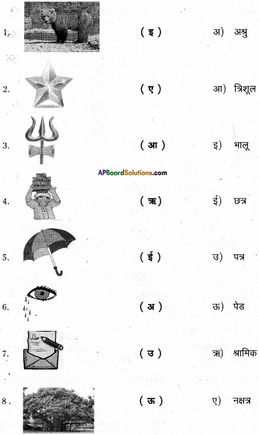 AP Board 6th Class Hindi Solutions Chapter 8 जन्म दिन 15