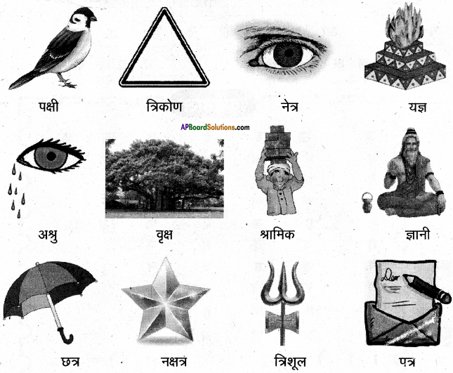 AP Board 6th Class Hindi Solutions Chapter 8 जन्म दिन 3