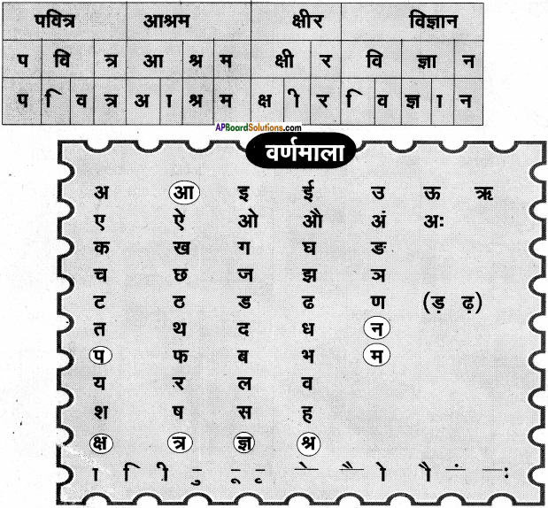 AP Board 6th Class Hindi Solutions Chapter 8 जन्म दिन 4