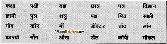 AP Board 6th Class Hindi Solutions Chapter 8 जन्म दिन 5