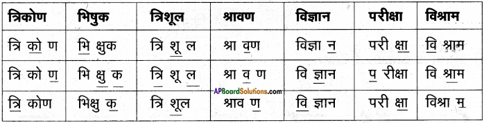 AP Board 6th Class Hindi Solutions Chapter 8 जन्म दिन 8