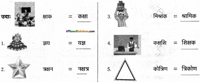 AP Board 6th Class Hindi Solutions Chapter 8 जन्म दिन 9