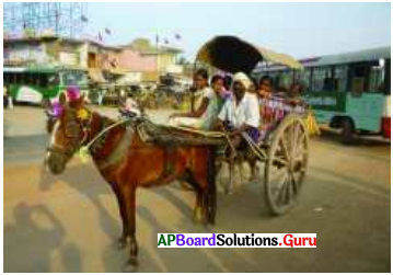 AP 7th Class Social Important Questions Chapter 10 Importance of Transport System 1