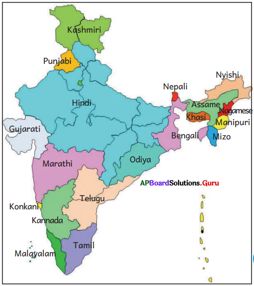 AP Board 6th Class Social Studies Important Questions Chapter 11 Indian Culture, Languages and Religions 1